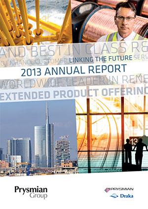 Годовой отчет 2013